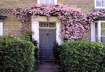The Elms front door with clematis